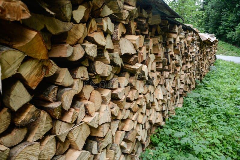 Fileira de uma madeira vista fotografia de stock royalty free