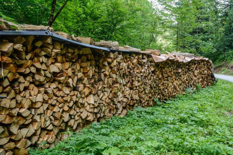 Fileira de uma madeira vista foto de stock