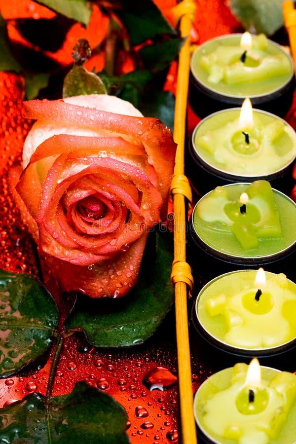 Fileira de velas verdes foto de stock royalty free