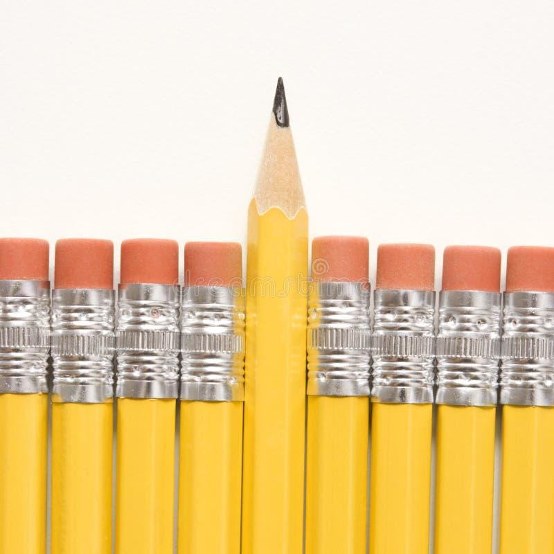 Fileira dos lápis. foto de stock royalty free