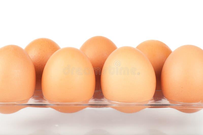 Download Ovos foto de stock. Imagem de animal, saudável, isolado - 29845788