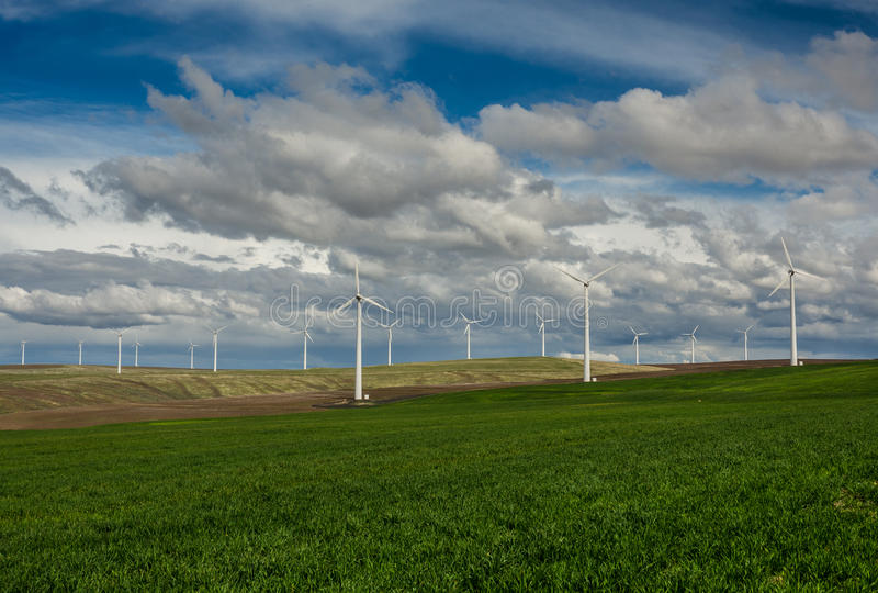 Fileiras das turbinas eólicas e de um campo gramíneo do rolamento imagens de stock royalty free