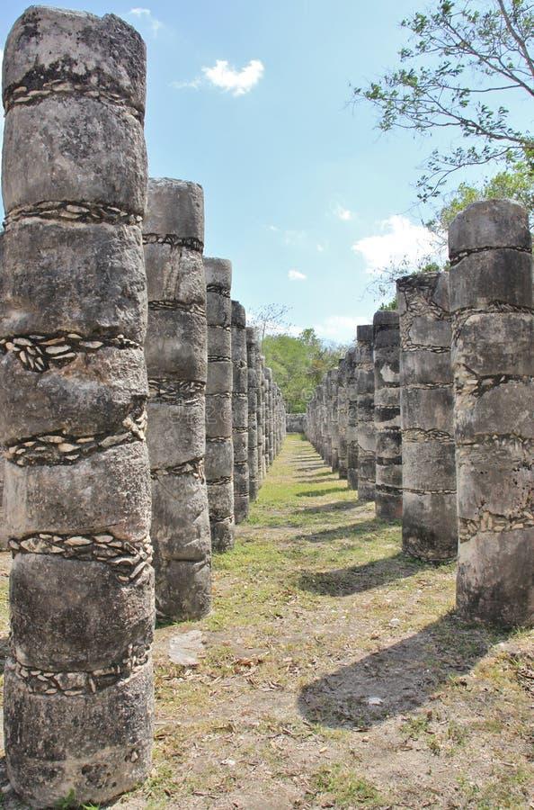 Fileiras de colunas cinzeladas fotos de stock