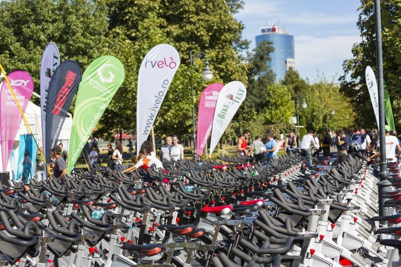 Fileiras de giro estacionárias das bicicletas fotografia de stock