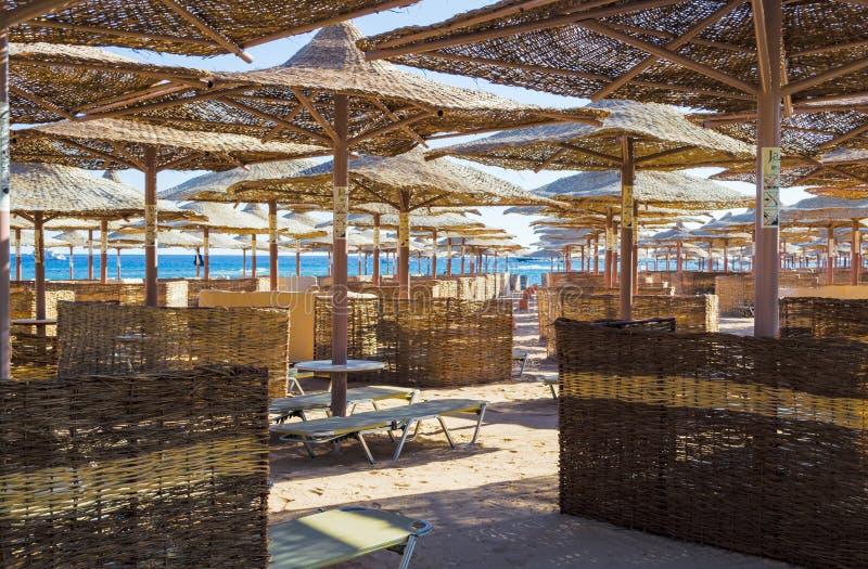 Fileiras de guarda-chuvas da palha do sol, esticando na distância em uma praia larga no Mar Vermelho, baía de Makadi, Hurghada imagem de stock royalty free
