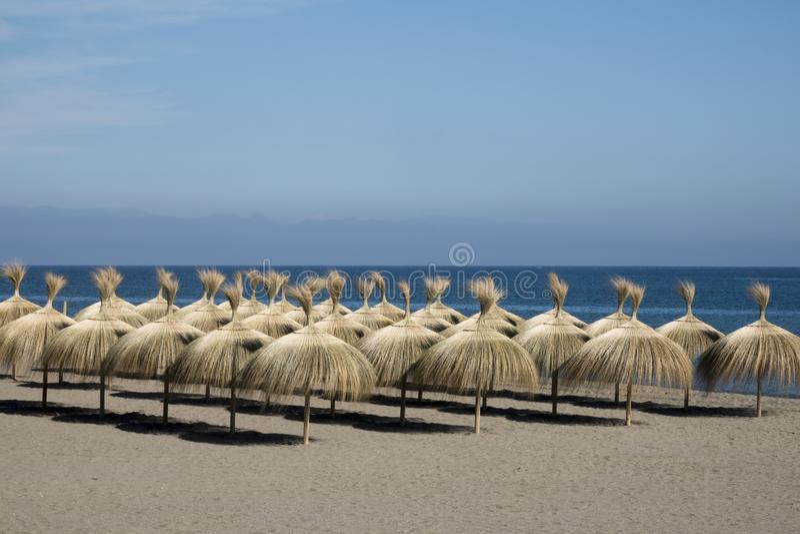 Fileiras dos guarda-chuvas da grama que esperam tourits fotos de stock royalty free