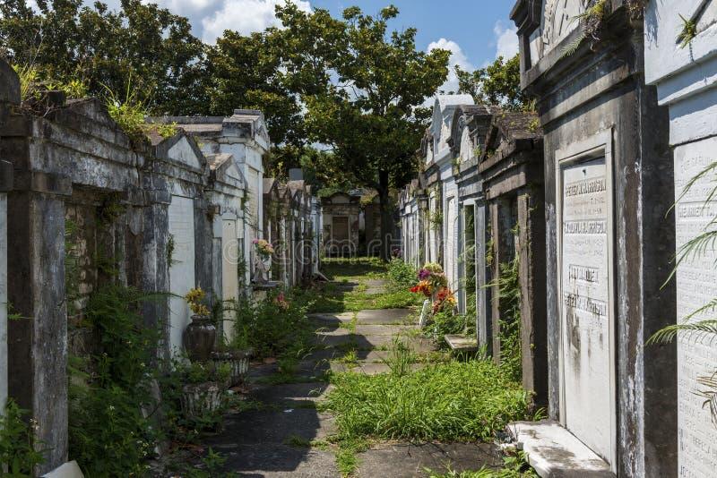 Fileiras dos túmulos no cemitério de Lafayette nenhum 1 na cidade de Nova Orleães, Louisiana fotografia de stock royalty free