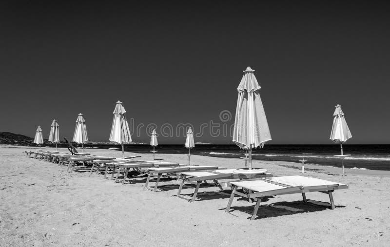 Fileiras preto e branco dos guarda-chuvas e das cadeiras de plataforma na praia fotos de stock