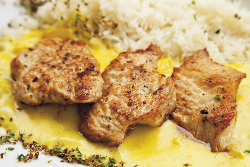 Filet de dinde garni avec de la sauce à riz et à cari image stock