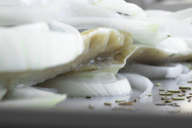 Filet de hareng sur l'assiette avec anneaux d'oignon image stock