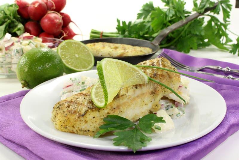 Filet de merluches image libre de droits