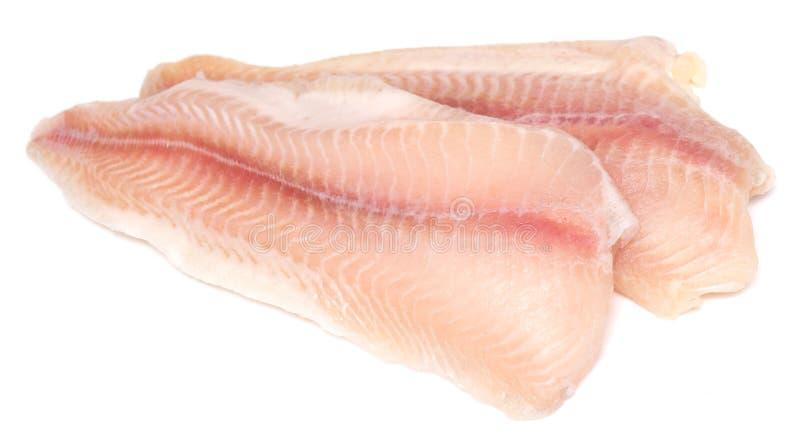 Filet de poissons crus images stock
