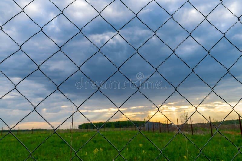 Filet de Rabitz de barrière de grillage photographie stock libre de droits