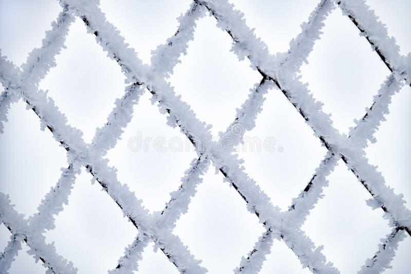Filet en métal couvert par la gelée photographie stock libre de droits