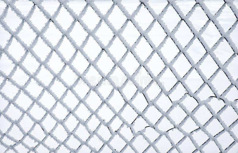 Filet en métal couvert par la gelée photos libres de droits