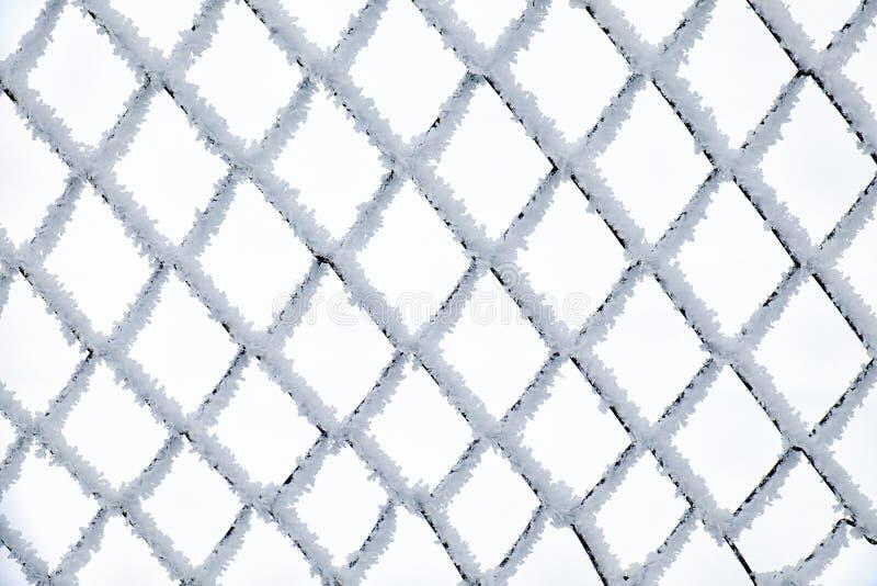 Filet en métal couvert par la gelée image libre de droits