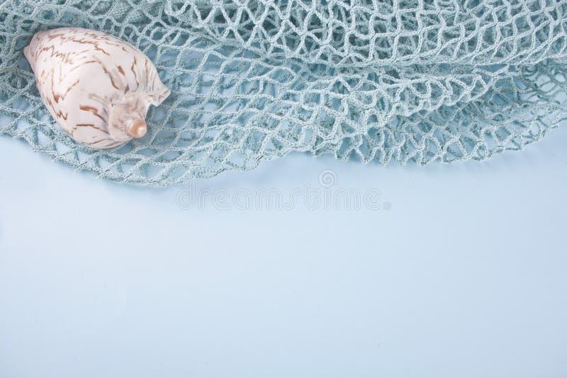 Filet et grandes coquilles de mer Copiez l'espace image stock