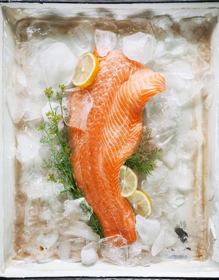 Filete de color salmón en el hielo con las hierbas y los limones del eneldo en un molde para el horno del vintage imagen de archivo