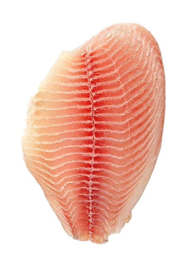 Filete de los pescados aislados fotos de archivo