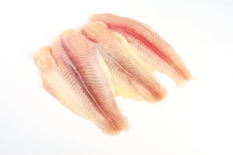Filete de pescados crudo fresco foto de archivo libre de regalías