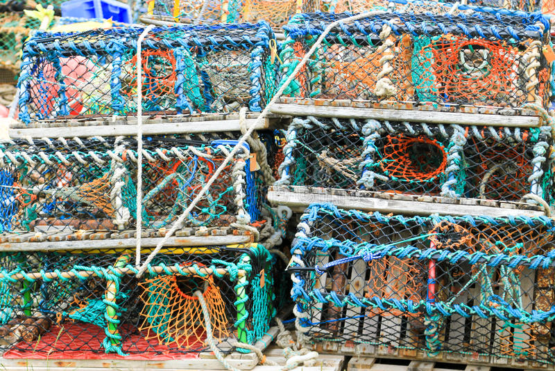 Filets de crabe de homard images libres de droits