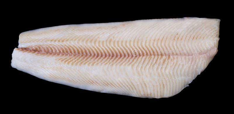 Filetto di pesce bianco del singolo intero merluzzo crudo fresco immagine stock