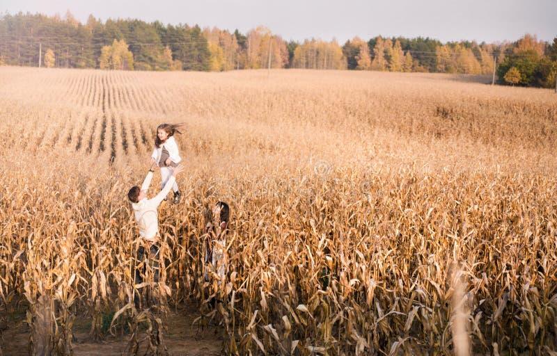 Filha do lance do paizinho acima no campo de milho do outono imagens de stock