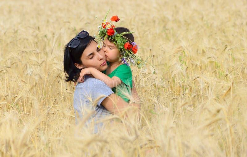 Filha pequena que abraça e que beija sua mãe no campo de trigo com flores imagem de stock