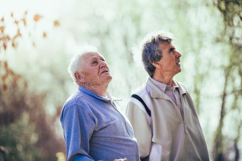 Filho adulto que anda com seu pai superior no parque imagens de stock