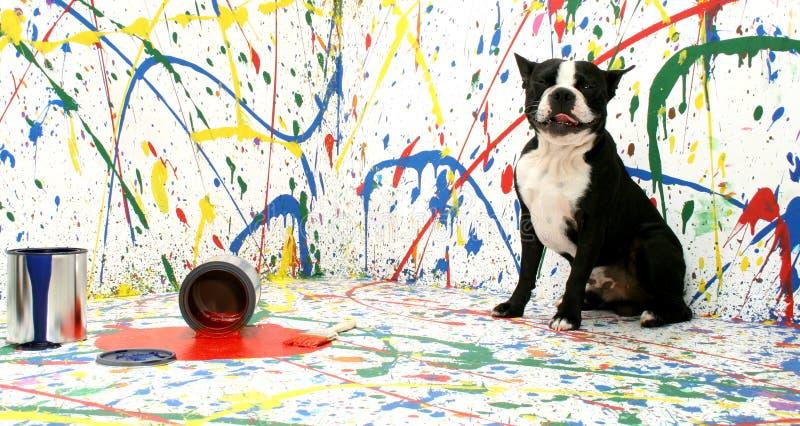 Filhote de cachorro artístico fotografia de stock