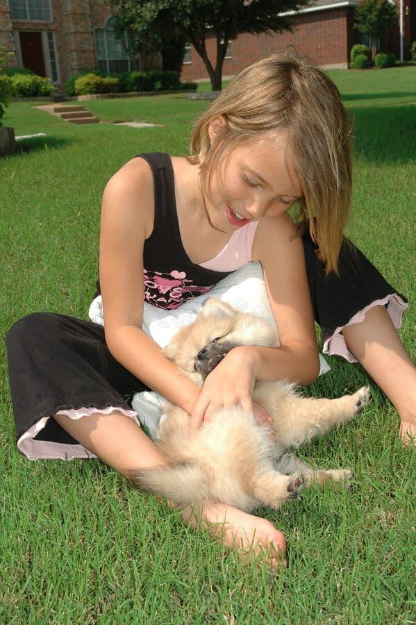 Filhote de cachorro brincalhão imagem de stock royalty free
