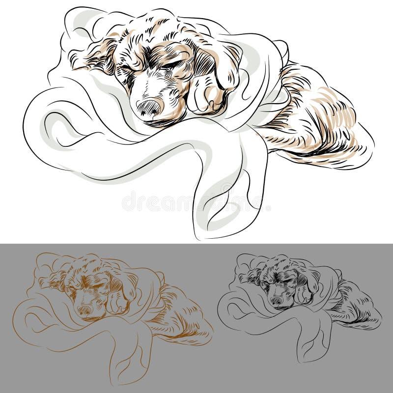 Filhote de cachorro de Labrador que dorme em um cobertor ilustração stock
