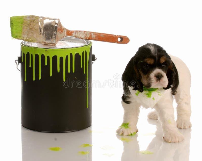 Filhote de cachorro impertinente imagem de stock