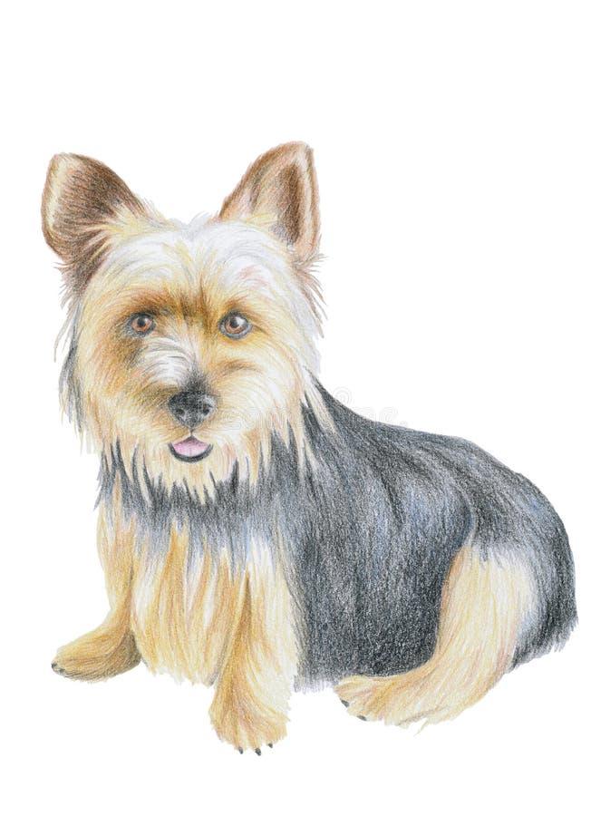 Filhote de cachorro pequeno ilustração royalty free