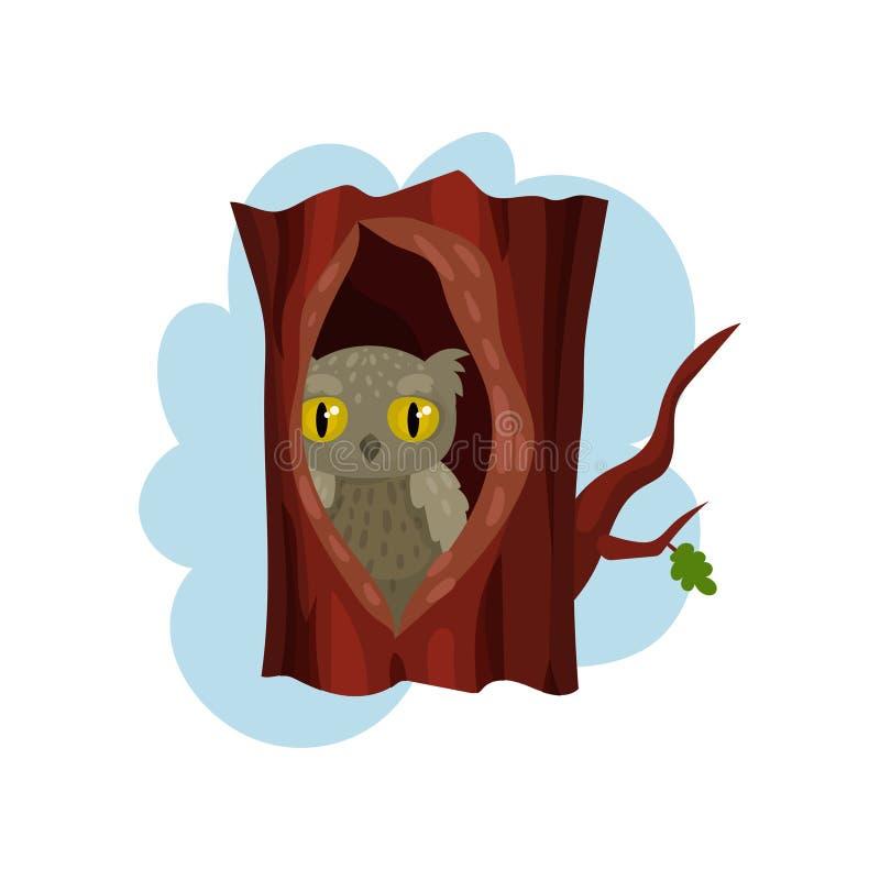 Filhote de coruja bonito que senta-se na cavidade da árvore, da árvore velha para fora tornada ôca e da coruja dentro da ilustraç ilustração stock