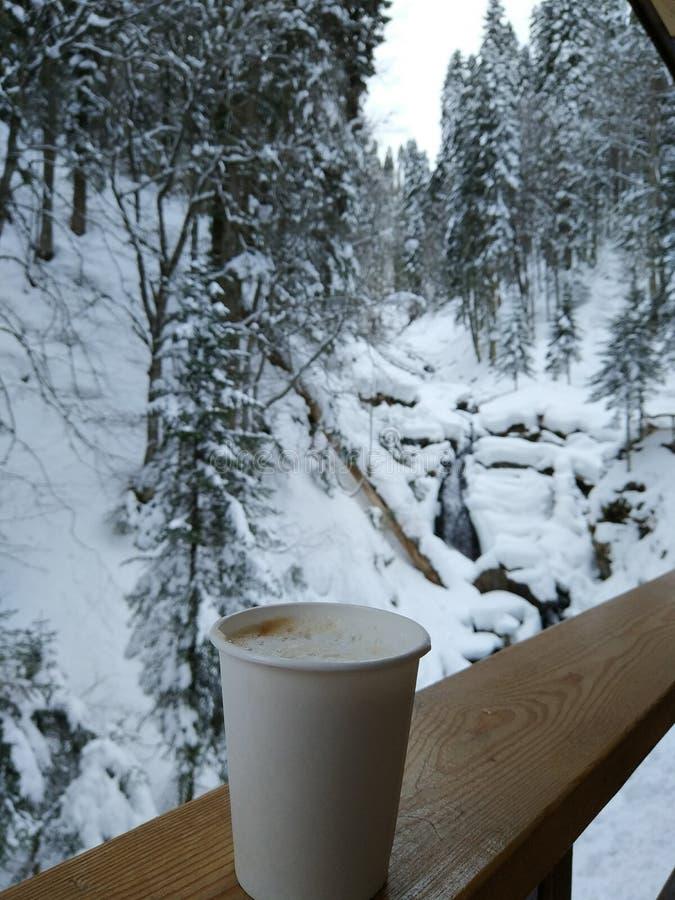 Filiżanka kawy w lesie zdjęcia stock