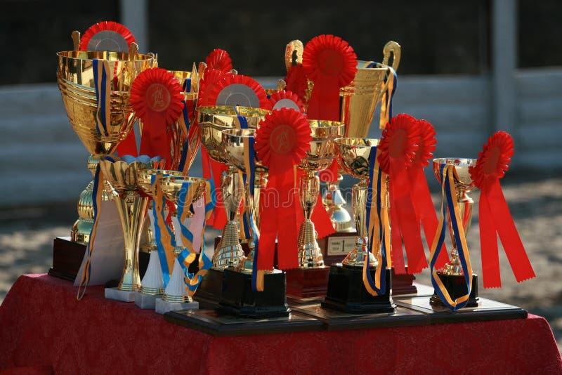 Filiżanka koń wytrzymałość z czerwonymi różyczkami zdjęcia royalty free