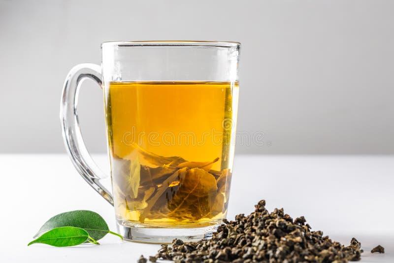Filiżanka zielona herbata z wysuszoną wielką liść herbatą i świeżymi herbacianymi liśćmi na białym tle Dieta i zdrowy napój fotografia royalty free