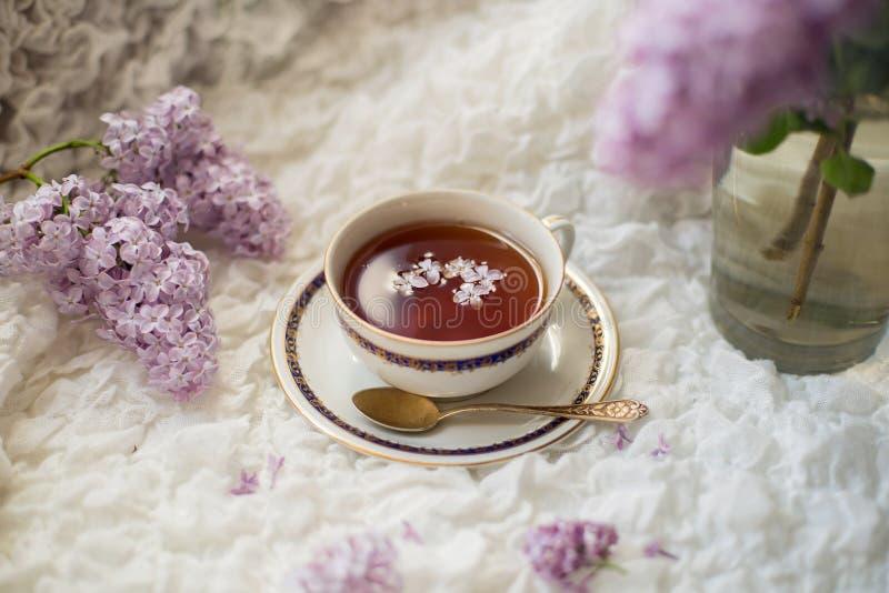 Filiżanka aromatyczna czarna herbata z bez gałąź fotografia stock
