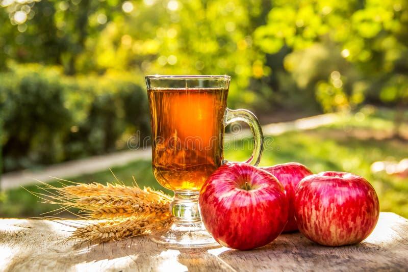 Filiżanka gorąca herbata w ogródzie Czerwoni jabłka i herbata Spiced jabłczana herbata obraz royalty free