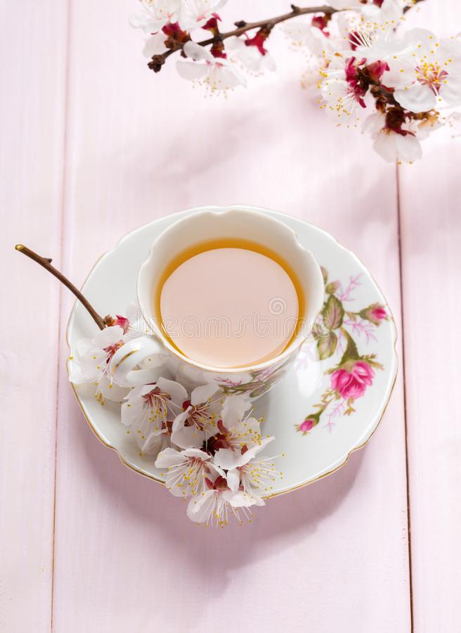 Filiżanka herbaty i wiosny kwiatów kwiaty morela na świetle - różowy drewniany stół obraz royalty free
