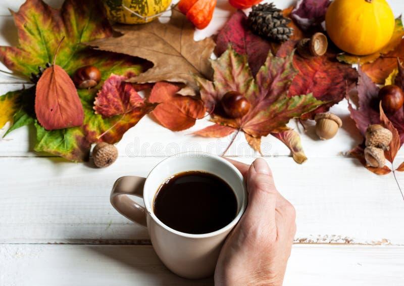 Filiżanka kawy i jesień liście zdjęcie royalty free