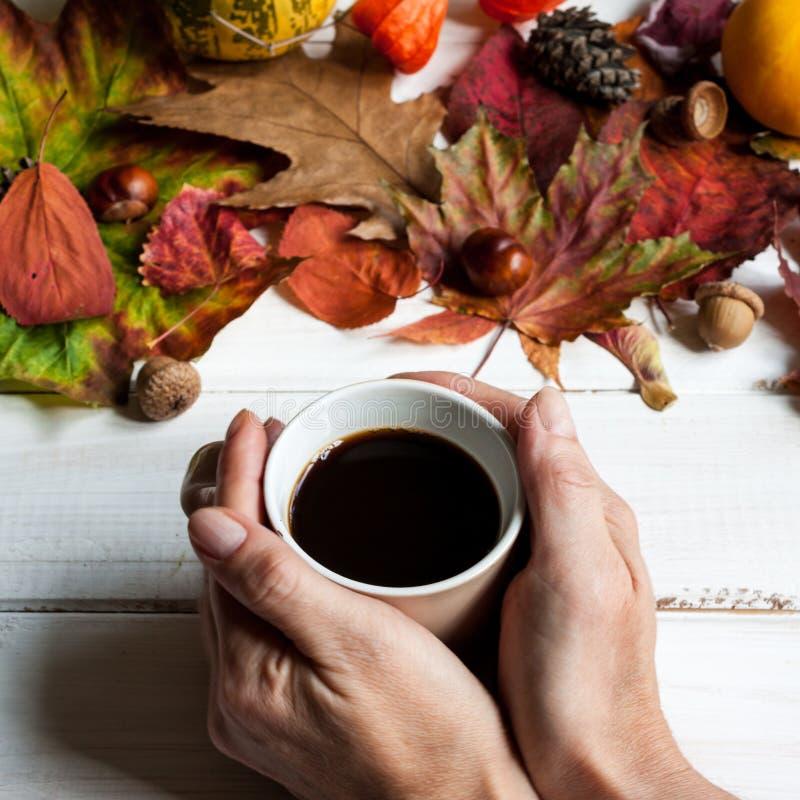 Filiżanka kawy i jesień liście obrazy stock
