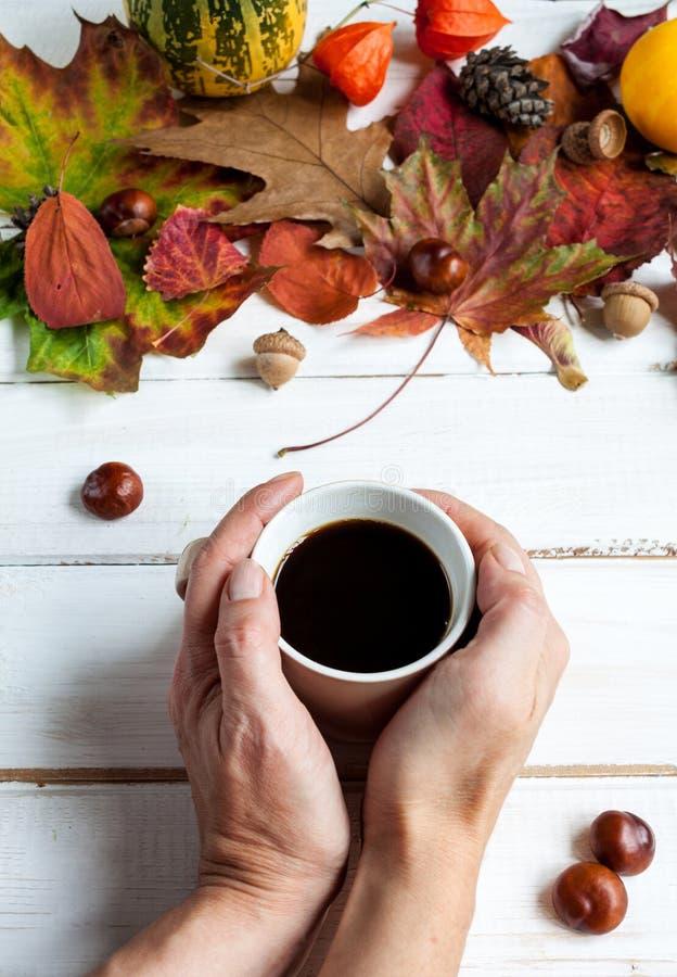 Filiżanka kawy i jesień liście zdjęcia royalty free