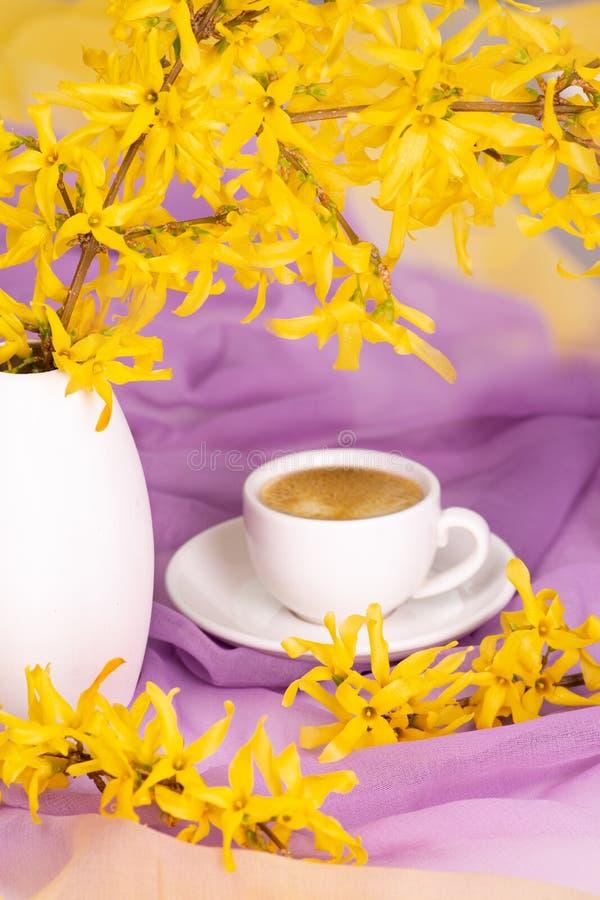 Filiżanka kawy stojaki na textural jedwabniczej pielusze delikatny kolor wazą z kwiecenie gałązkami forsycje słońce promienie obraz stock