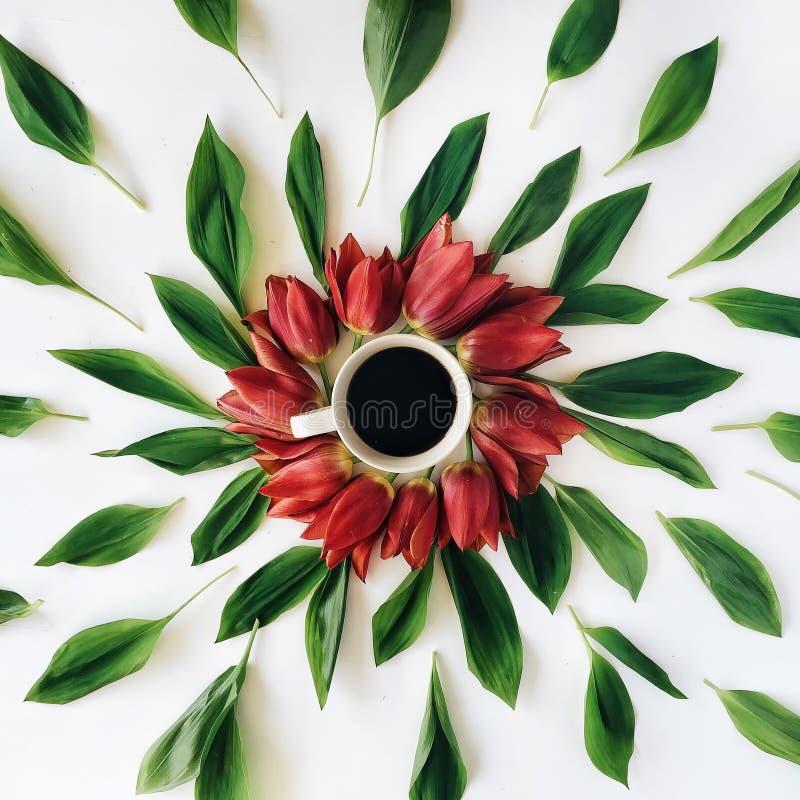 Filiżanka kawy z czerwonymi tulipanowymi kwiatów pączkami, liśćmi i zdjęcie stock