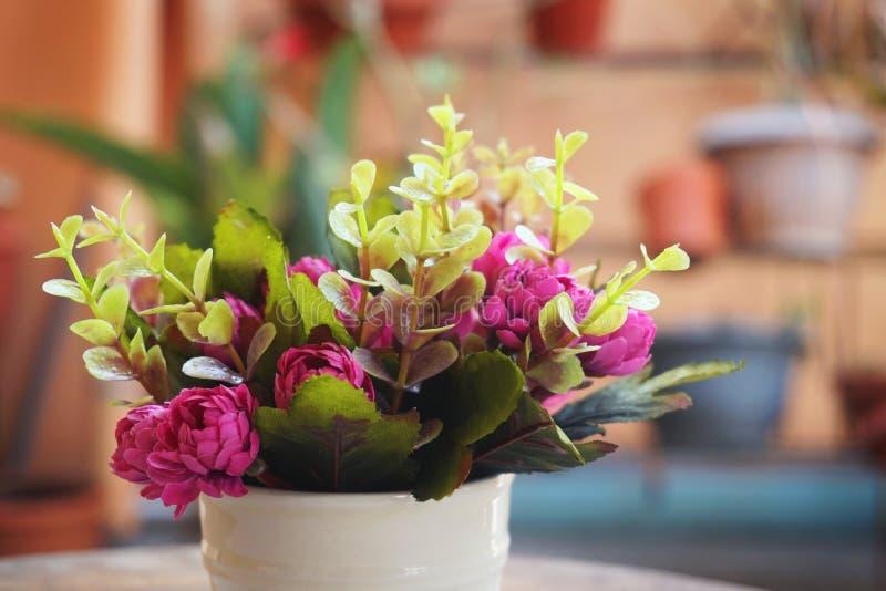 Filiżanka kolorowy menchia kwiat zdjęcie royalty free