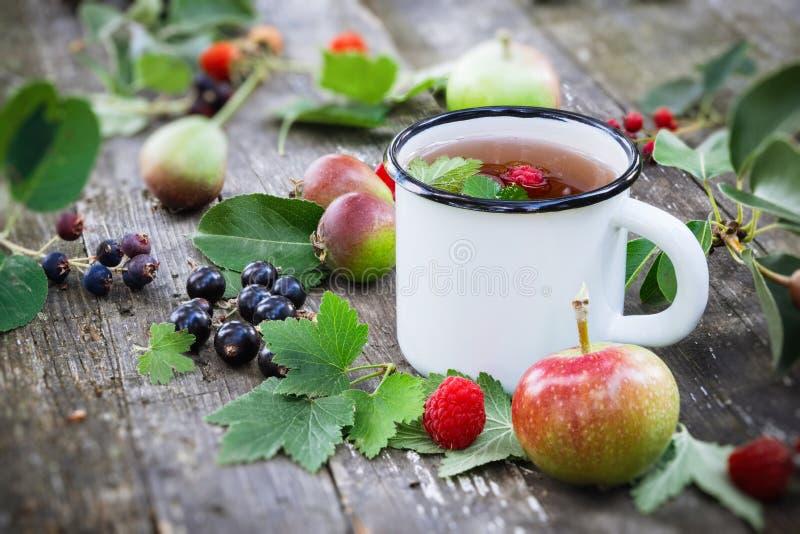 Filiżanka owocowa herbata z jabłkami, bonkretami, malinkami i czarnego rodzynku jagodami na drewnianym stole outdoors, zdjęcie royalty free