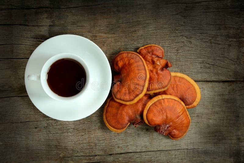 Filiżanka reishi herbata i świeży Lingzhi my rozrastamy się obrazy stock