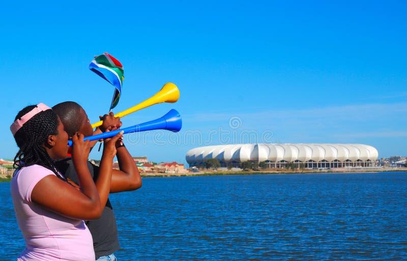 filiżanka wachluje piłka nożna świat fotografia royalty free